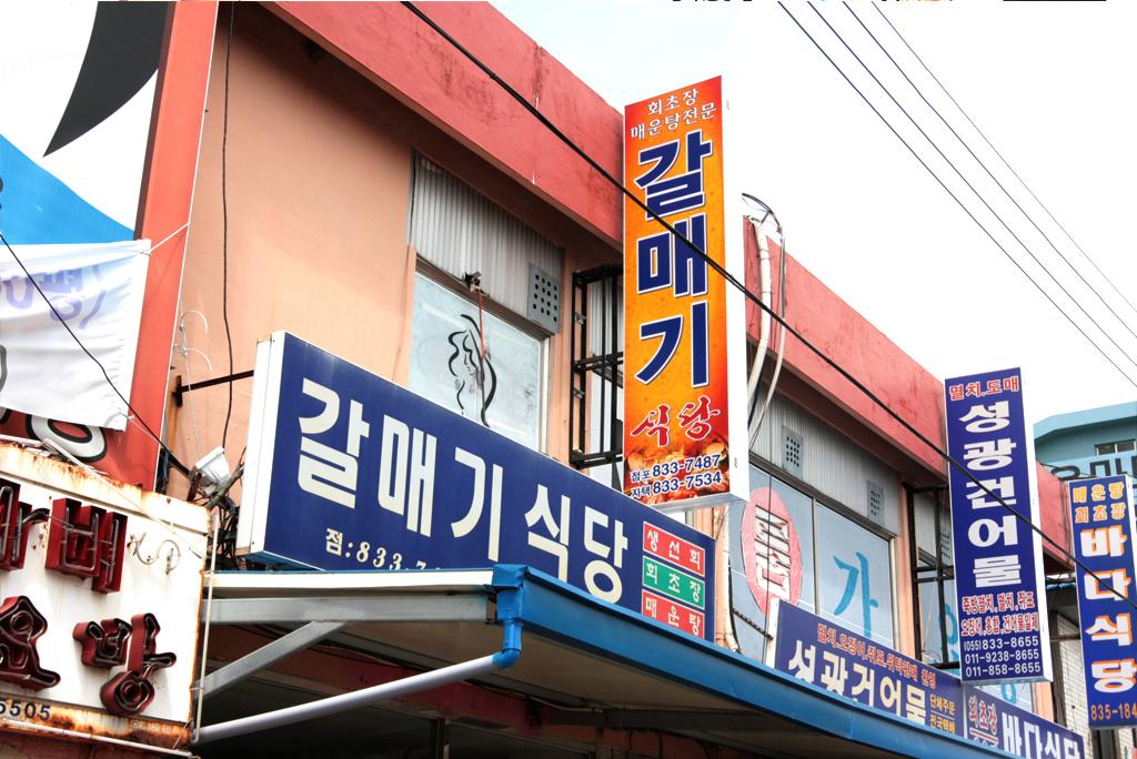 갈매기식당2.jpg