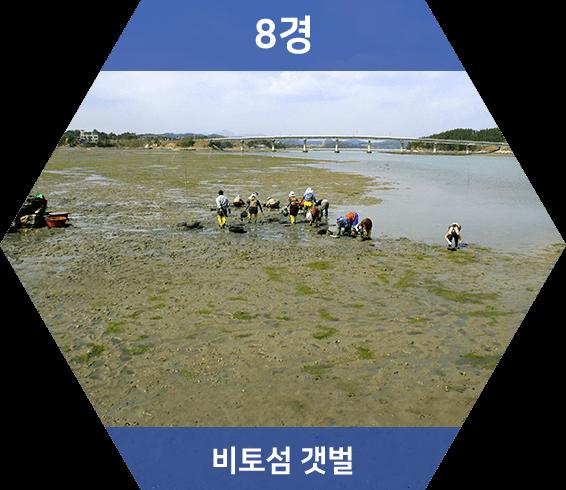 별주부전의 전설이 서려있는 비토섬, 연안 생태계 유지물로서 훌륭하게 보전되어 자연생태 체험관광지로 각광 받고 있다.